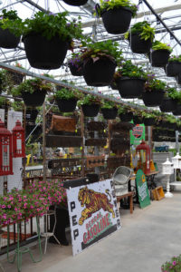 hanging baskets and garden decor