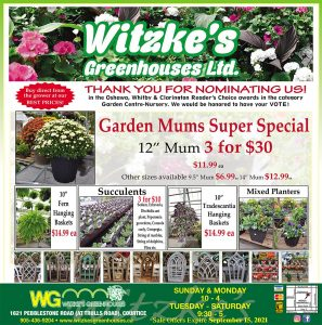 Witzke Greenhouses Flyer